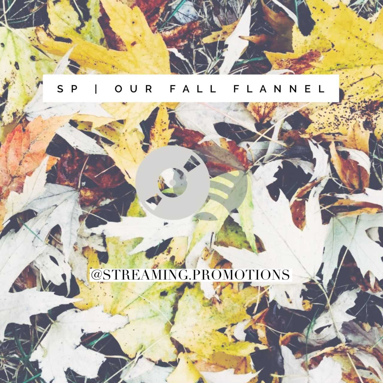 Happy October! Our fall playlist is here.
